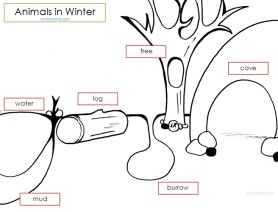 AnimalsinWinter